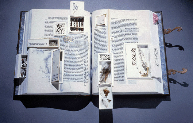 Science and the Artist's Book