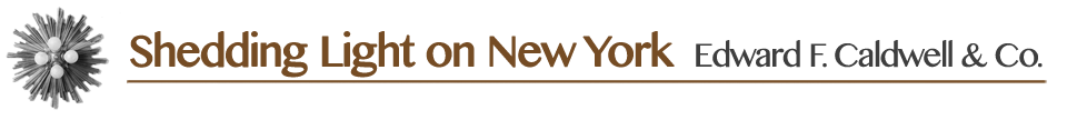 Shedding Light on New York text image banner