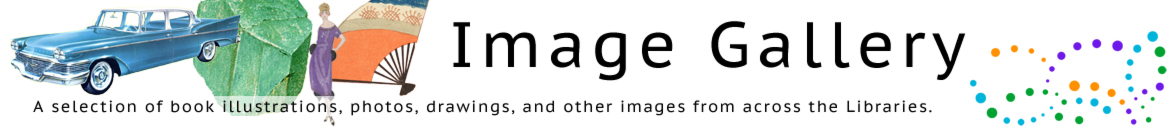 Image Gallery Homepage banner