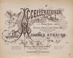"Cover of ""Accellerationen"""