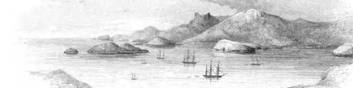 Grainy grayscale illustration of shore