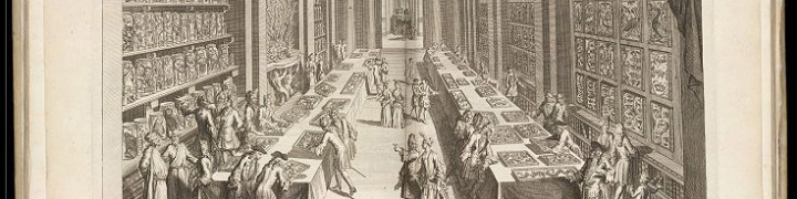 print showing 18th century europeans in a hall looking at natural history specimens