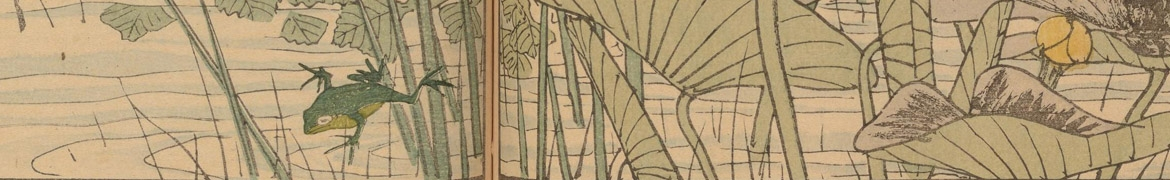 detail of a Japanese color print showing a small frog leaping into the water, with lilies and reeds