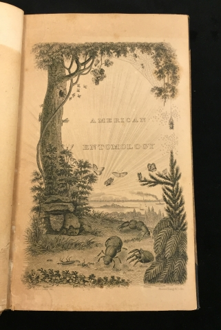 Title Page of American Entomology