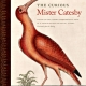 Image of book cover 'The Curious Mister Catesby'