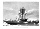 Illustration of a sailing ship on the ocean with icebergs all around taken from the U.S. Exploring Expedition