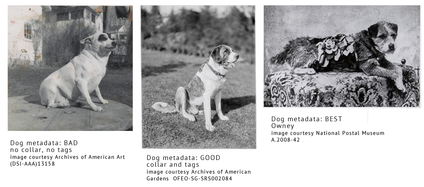 three black and white pictures of dogs with captions comparing their tags to descriptive metadata