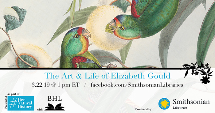 The Art and Life of Elizabeth Gould graphic with green birds