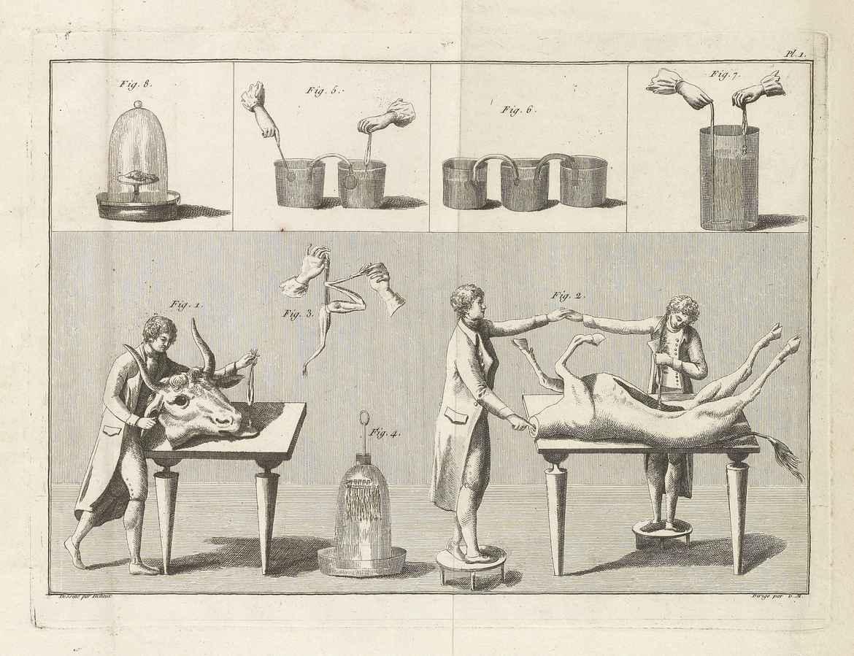 Giovanni Aldini. Essai théorique et expérimental sur le galvanisme [Theoretical and experimental essay on galvanism] Paris, 1804.