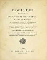 Cover of Description botanique du Chiranthodendron