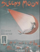 Cover of Sleepy moon