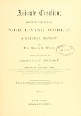 Cover of Animate creation