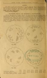 Cover of Embroidery hints- Fall and Winter 1910