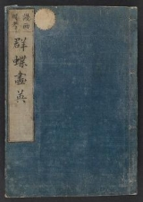 Cover of Gunchō gaei