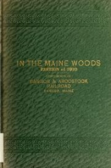 Cover of In the Maine woods