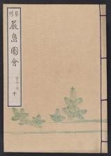 Cover of Itsukushima zue v. 10