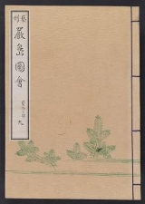 Cover of Itsukushima zue v. 9