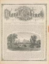 Cover of The ladies' floral cabinet v.3-v.4,v.5:no.58-v.6:no.68 (1874-1877)