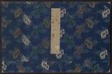Cover of Tokaido gojusantsugi zokuga