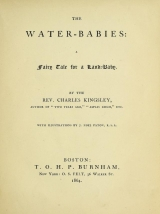 Cover of The water-babies