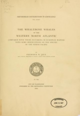 Cover of The whalebone whales of the western North Atlantic compared with those occurring in European waters
