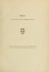 Cover of Wien am Anfang des XX. Jahrhunderts