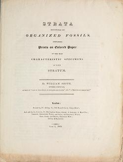 "Cover of ""Strata identified by organized fossils : containing prints on colored paper of the most characteristic specimens in each stratum /"""