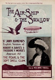 """Cover of """"The air-ship & the swallow"""""""
