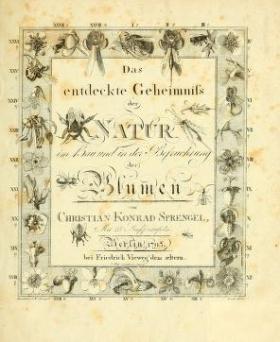 Cover of Das entdeckte Geheimniss der Natur im Bau und in der Befruchtung der Blumen