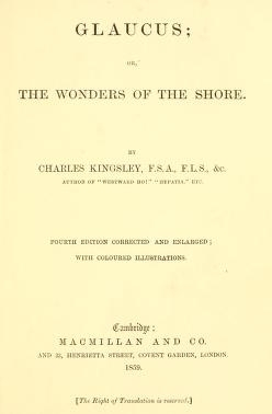 """Cover of """"Glaucus, or, The wonders of the shore /"""""""
