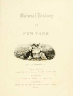 Cover of Natural history of New York