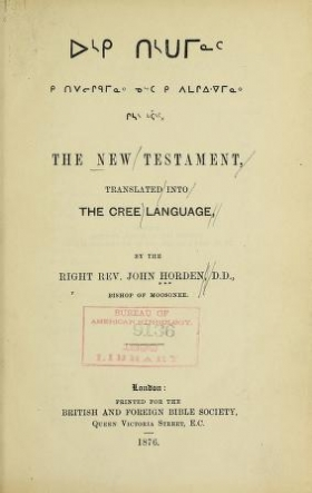 "Cover of ""The New Testament"""