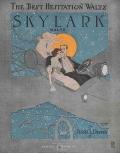 Skylark : waltz / by Jessie L. Deppen
