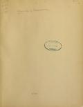 Album de la Renaissance / publié par Georges Hirth