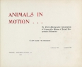 Cover of Animals in motion