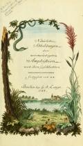 Cover of Gemeinnüzzige Naturgeschichte des Thierreichs
