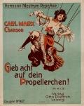 Cover of Gieb acht auf dein Propellerchen!