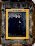Cover of Hello, hello, New York town