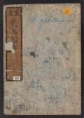 Cover of Kachol, shashin zui v. 1
