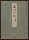 Cover of Minko nisso : [Genji monogatari shushaku] v. 9