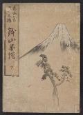 "Cover of ""Tōkaidō gojūsantsugi hachiyama zue"""
