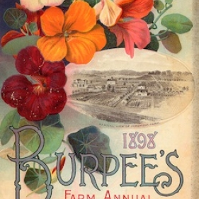 red orange and yellow flowers surround a small aerial photo of a farm and the words 1898 Burpee's farm annual