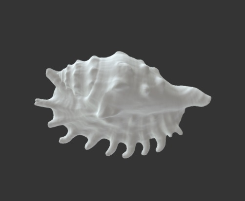 A 3D printed model of a shell on a black background