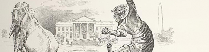 Drawing from Life: Caricatures and Cartoons from the American Art / Portrait Gallery Collection