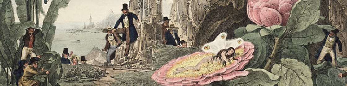 Several people in 19th century clothes explore a forest of giant plants and look upon a female fairy sleeping on a giant flower.