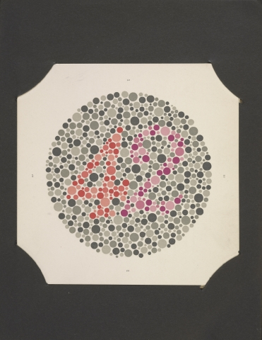 A circle made up of varying sizes of dots. The dots are colored such that a number appears to those without color blindness and the number is invisible for those with color blindness.