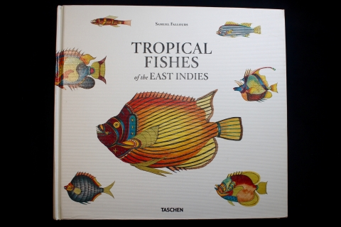Cover of Tropical Fishes of the East Indies