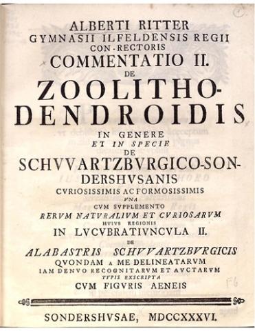 Commentatio II.  De Zoolitho-dendroidis in genre et in specie de Schwartzburgico-Sondershusianis curiosissimus ac formosissimus...