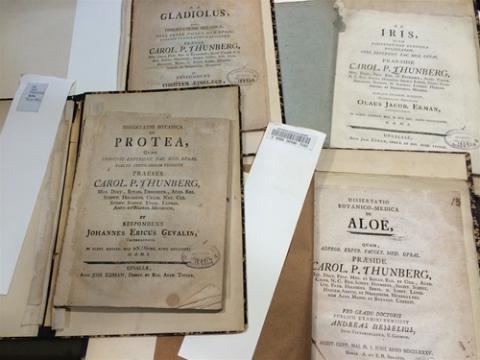 Dissertatio botanico-medica de aloe Aloes