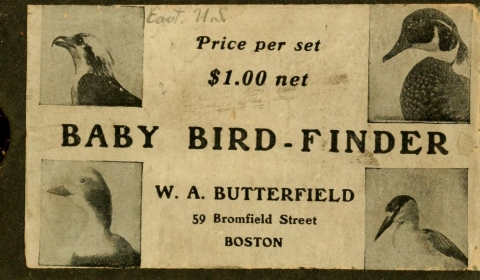 Cover of Baby bird-finder